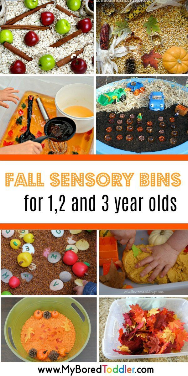 Autumn And Fall Sensory Bins For Toddlers Fall Activities For Toddlers Fall Sensory Bin Sensory Bins