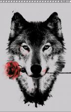 Royal Wolves (Harry Styles fanfic French), écrit par 1DForever010298