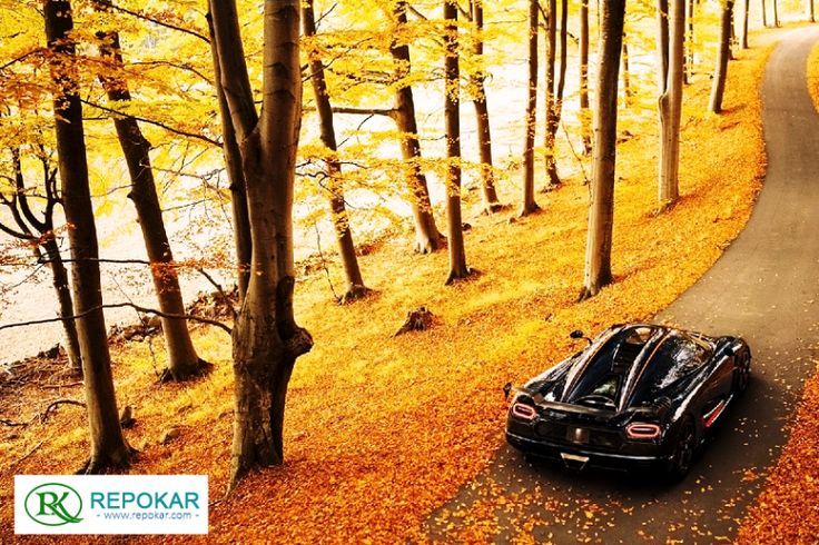 Interact with #car_sellers, apply for financing, and go on test drives with RepoKar.com