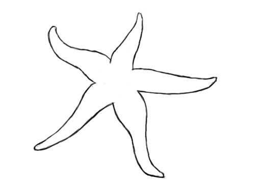 How To Draw A Starfish  a3648a5b9db