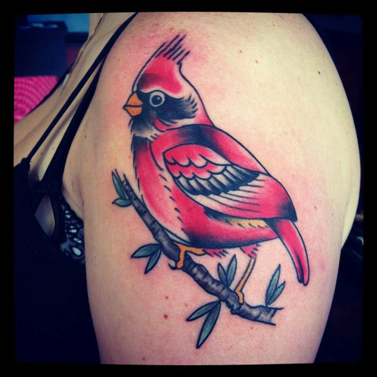 Third tattoo traditional twist on a cardinal done by for Iron lotus tattoo