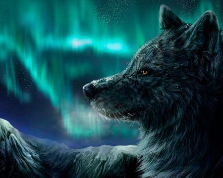 What is my Spirit Animal Guide?  #spiritanimals #dogs #spirituality