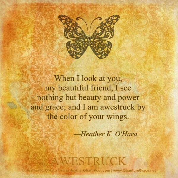 """""""When I look at you, my beautiful friend, I see nothing but beauty and power and grace; and I am awestruck by the color of your wings."""" —Heather K. O'Hara www.pinterest.com/hkohara"""