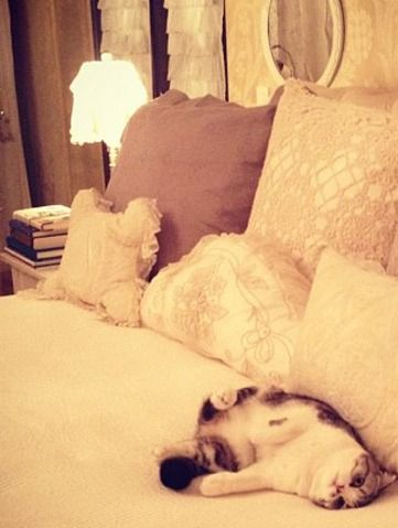 Ohmygosh how cute is Meredith please?! <3