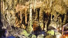 Ride a donkey to Dikteon Cave #Crete