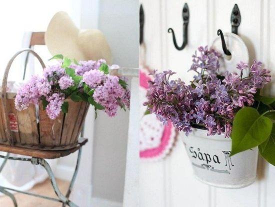 flieder-arten duftende-frühjahr blüher-dezent-lila | flieder, Garten und Bauten