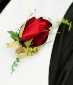 Red Rose buttonhole with bezelia and asparagus fern