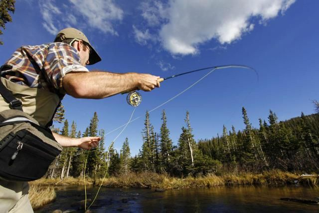 How to fly fish. A general introduction to fly fishing, popular species and necessary gear.