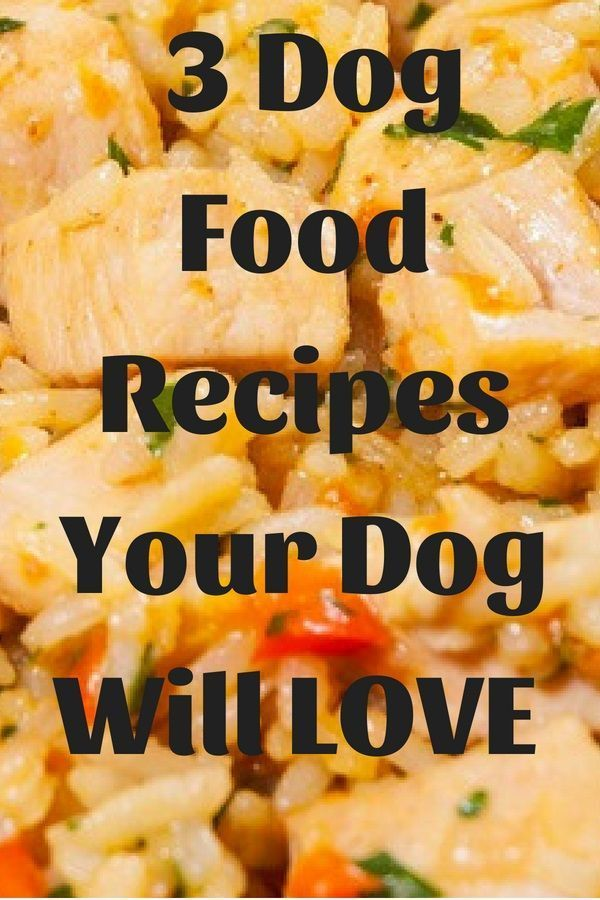 3 Easy Vet Approved Homemade Dog Food Recipes Dog Food Recipes