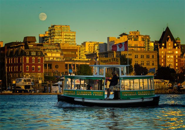 Harbour Tours • Victoria Harbour Ferry • Tours & Charters