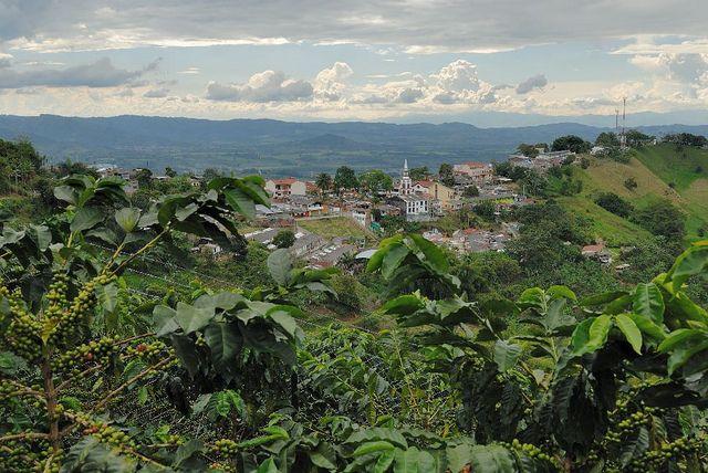 Buenavista, Quindio, Colombia.