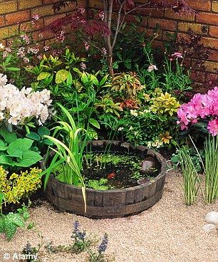Small Garden Pond Ideas small garden pond with cascading fountain Small Is Beautiful Concluding His Series Monty Don Says Even The Tiniest Garden Can Accommodate One Of These Container Ponds
