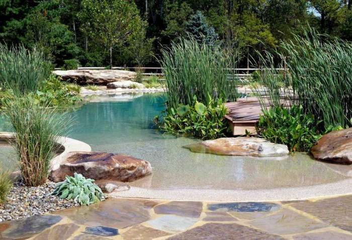 Natural filtered pool designed to look like a pond, with beach entry access!