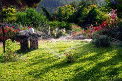 """Giardiniere Roma è un servizio """"Served Planet"""" per la realizzazione di giardini pubblici e privati, parchi e spazi verdi. Curiamo tutte le attività di giardinaggio, dal giardino pubblico alle ville private in tutta Roma e provincia."""