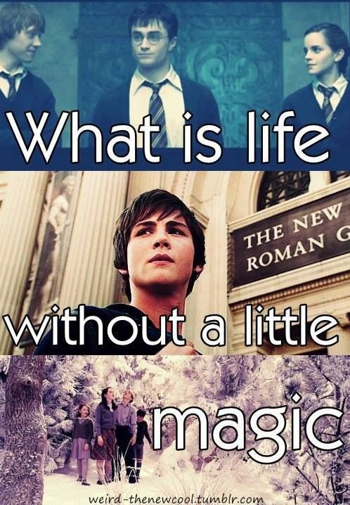 Harry Potter, Percy Jackson, Chronicles of Narnia!