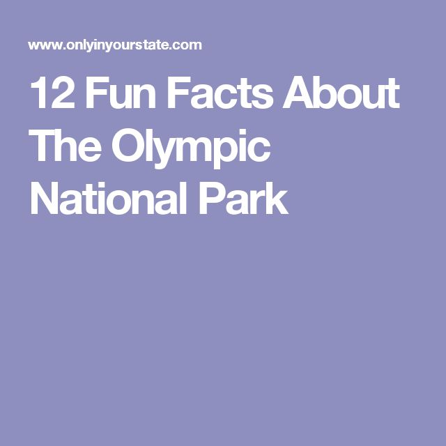 12 Fun Facts About The Olympic National Park