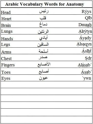 arabic vocab list The vocabulary lists include standard arabic, the egyptian (cairene) dialect, and transliterations you'll also find pages devoted to colloquial idiomatic expressions, proverbs, and sayings you'll also find pages devoted to colloquial idiomatic expressions, proverbs, and sayings.