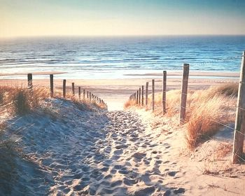 Toile tendue sur chassis bois de longueur : 50 cm et de largeur : 40 cm.Joli décor mural bord de mer avec sentier qui mène à la plage