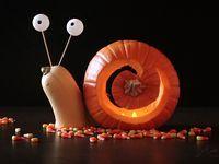 1 best ideas about Улитки on Pinterest | Pumpkins, Decorative gourd season and Snails