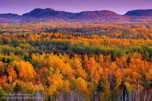 Témiscamingue fall colours tour photo by Mathieu Dupuis.  The Quebec side is an important section of the Lake Temiskaming tour.