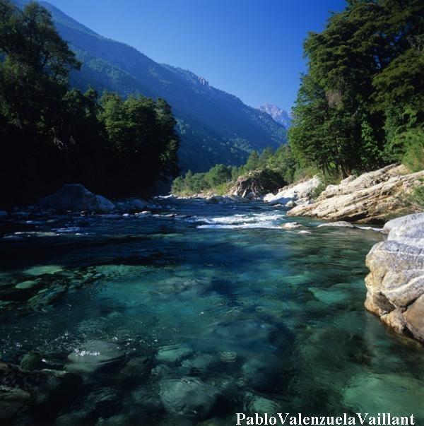 Río Achibueno  NO a las CENTRALES en el ACHIBUENO