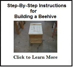 Bees-and-Beekeeping: How to Build a Beehive - Tips and Techniques