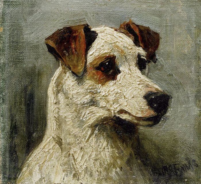 Study of a Hunt Terrier by John Emms | Art Posters