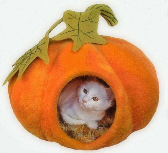 A Polar Bear's Tale: A hand made felted pumpkin cat bed