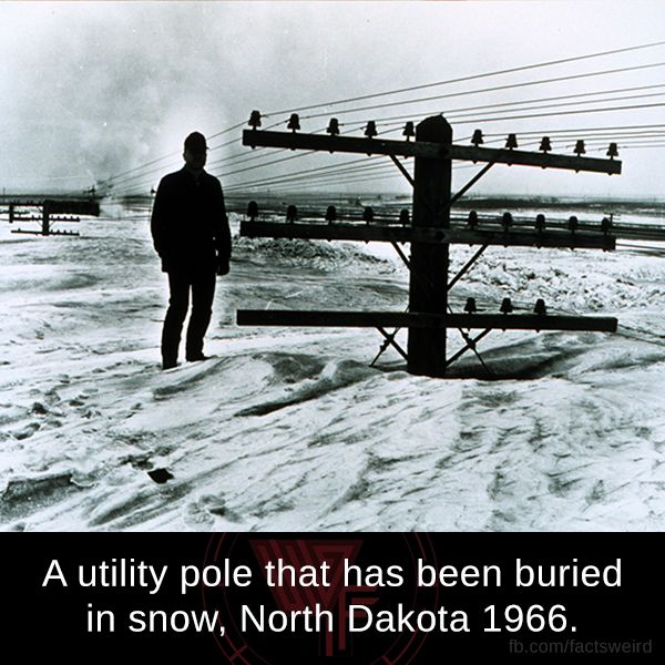 Mind Blowing Facts, A utility pole buried in snow, North Dakota 1966....