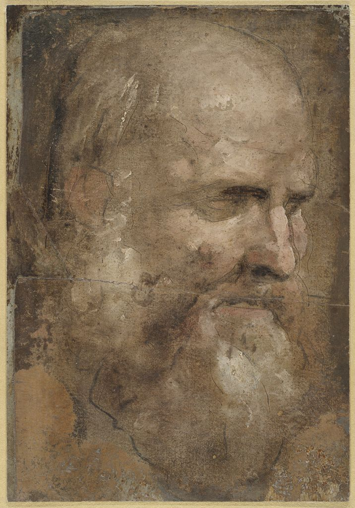Domenico Beccafumi, c.1486-1551, Italian, Head of Cincinnatus Turned Three-Quarters Right,  c.1529-1535.  Tempera (and/or oil), charcoal, and stylus, varnished overall, on paper; 25 x 17.3 cm.  Harvard University Art Museums, Massachusetts.  Mannerism.