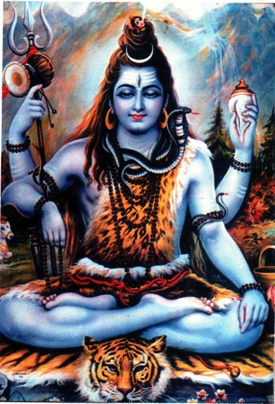 Shivaya ॐ