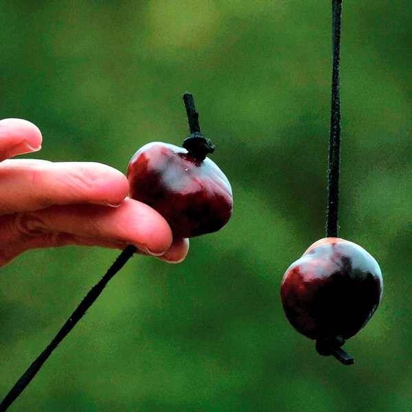 Conkers. I remember playing this until all you had was a lump of white stuff on a string! I tried everything, baking them, soaking them in vinegar and all sorts to get them to last the longest! I'm sure health and safety has sadly now stopped this kind of great kids' fun in the playground!