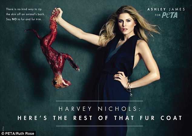 Dark: The former Made in Chelsea star has joined forces with animal rights crusaders PETA on a hard-hitting anti-fur campaign directed at Harvey Nichols after it abandoned its fur-free policy - (the fox isn't real)
