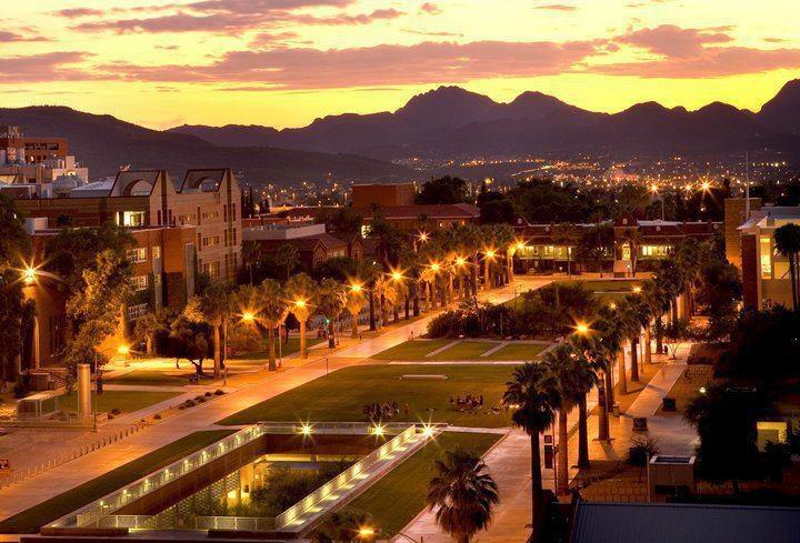 University of Arizona: Friends Love, Arizona Wildcats, Favorite Places, Arizona Univ, Schools, Bears, Happy Places, Colleges Students, Univ Asu