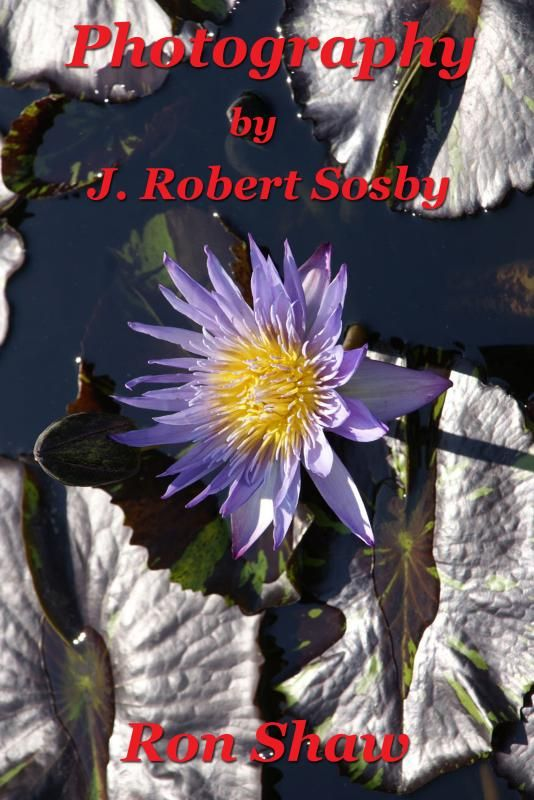 Cover Contest - Photography by J. Robert Sosby - AUTHORSdb: Author Database, Books and Top Charts