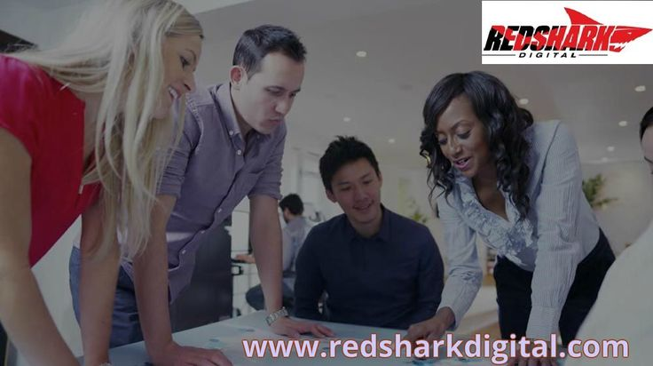 Red Shark Digital is Greenville, Wilmington and Eastern NC's leading digital marketing, advertising, web design and mobile app development company.