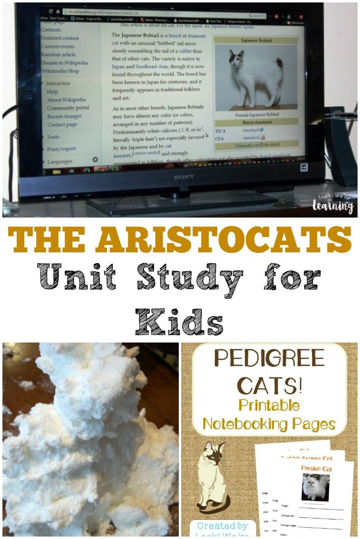 Use this The Aristocats unit study to turn a classic children's movie into a learning experience! via @lookwerelearn