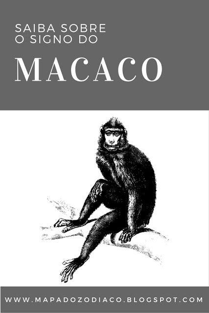 personalidade do signo chines do macaco