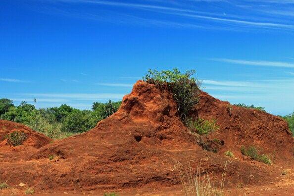 The Red Desert Port Edward, Kwa-Zulu Natal,  South Africa - 2011.