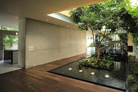 casas con arboles en su interior - Buscar con Google