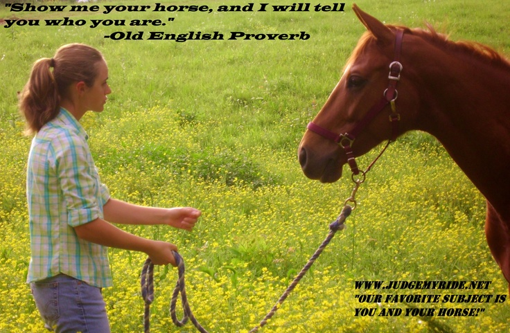 Love this quote! Hmmm, if I have a lazy, easy going, perfect child's horse, the kind of horse that would do anything with some sweet words, but can be slightly stubborn, what would I be? :)