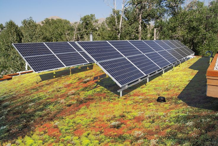 green roof plus solar panels Google Search Green roof