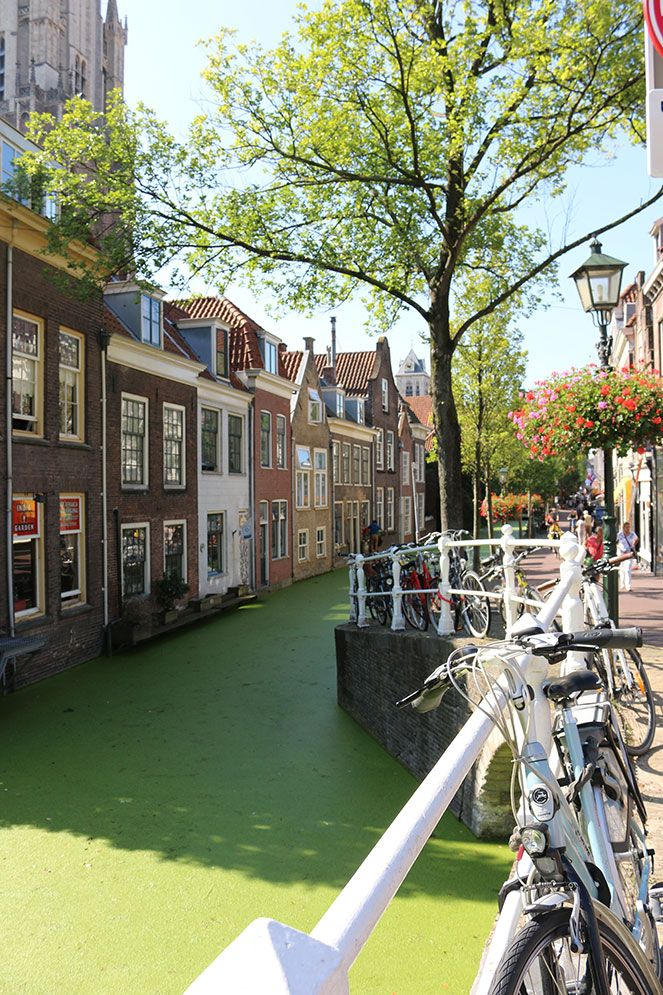Creative tour in Gouda and Delft, Neaderlands!