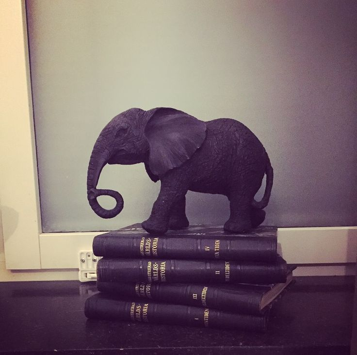 Simple interior for windows with old books and a black elephant