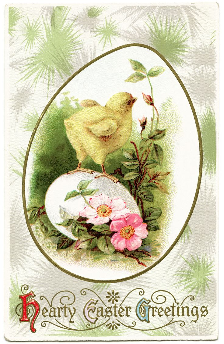 Adorable baby chick vintage postcard - TheOldDesignShop - Free Vintage Image ~ Hearty Easter Greetings