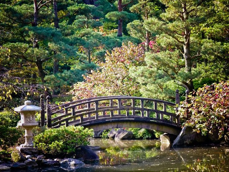 65 best images about anderson japanese gardens rockford - Anderson japanese gardens rockford illinois ...