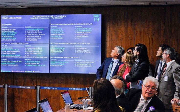 Comissão do Senado aprova união estável e casamento entre pessoas do mesmo sexo