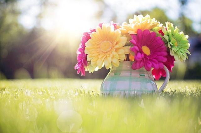 Flowers In Pitcher, Summer, Sunshine, Bouquet, Spring