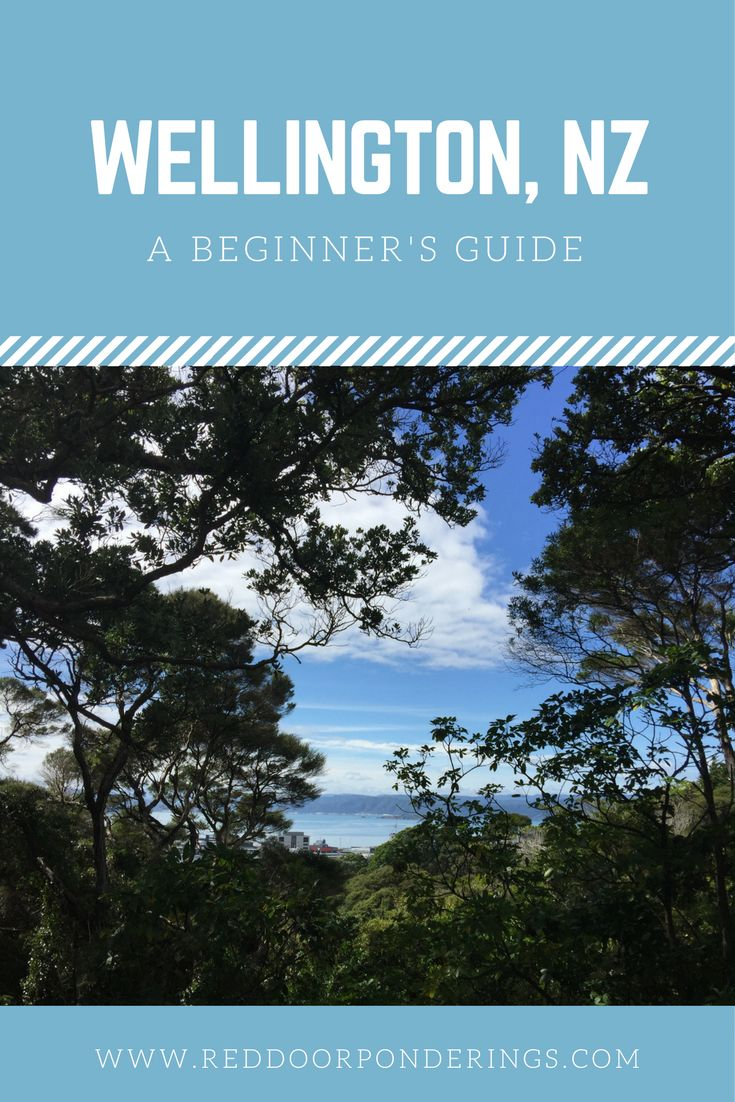 Looking to visit Wellington, New Zealand.  Here is a beginner's guide to help you plan.  https://reddoorponderings.com/a-beginners-guide-to-wellington-new-zealand/