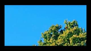 Recent UFO sighting over Texas!   Uncovering UFO's